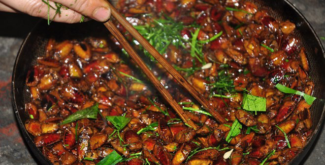 """Món ăn """"bất hủ"""" của người Việt từ loài côn trùng rất hôi hám"""