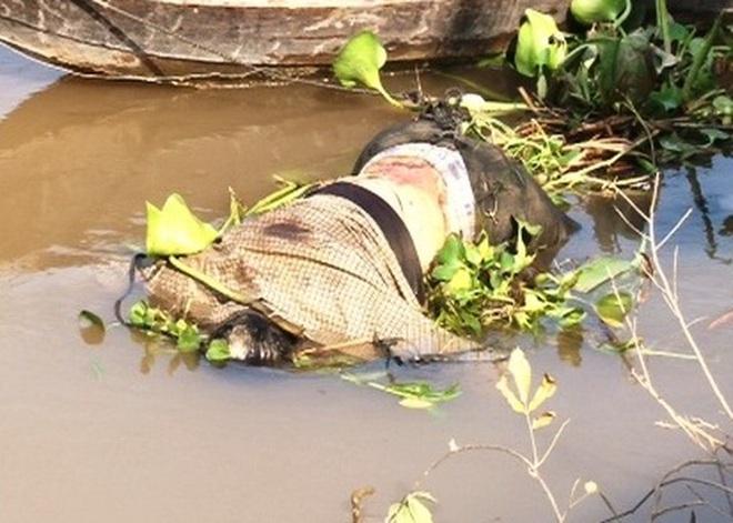 Phát hiện xác chết đang phân hủy trên sông Tiền