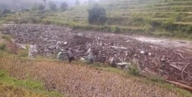 Clip người dân chạy theo lũ quét kinh hoàng để vớt gỗ