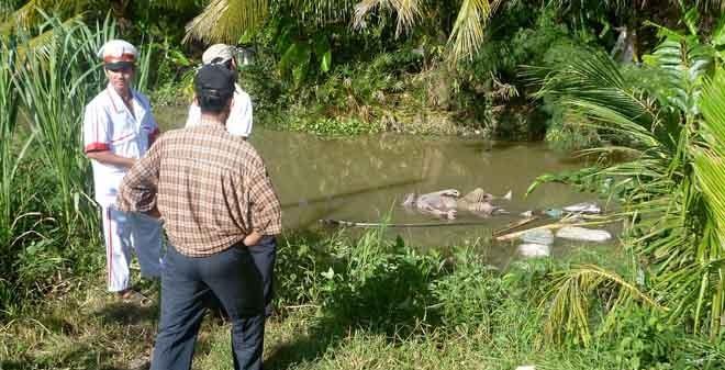 Hốt hoảng phát hiện thi thể phân hủy nổi trên mặt nước