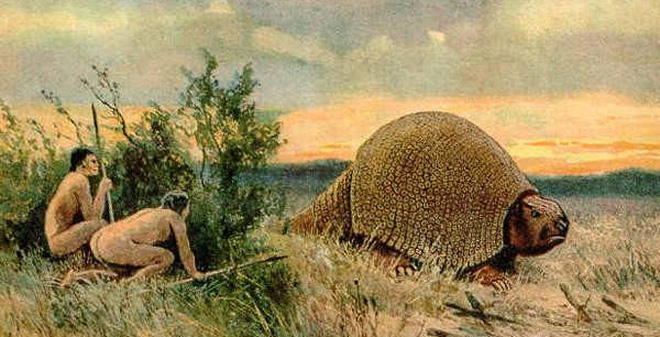 9 loài vật tuyệt đẹp nhưng tuyệt chủng bởi bàn tay con người