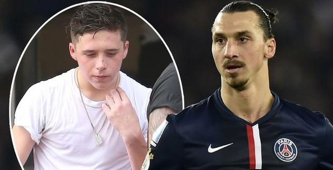 """Con trai David Beckham """"phát sốt"""" vì Ibrahimovic"""