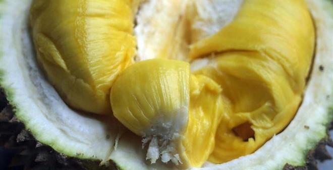 Ăn sầu riêng chữa được bệnh gì?