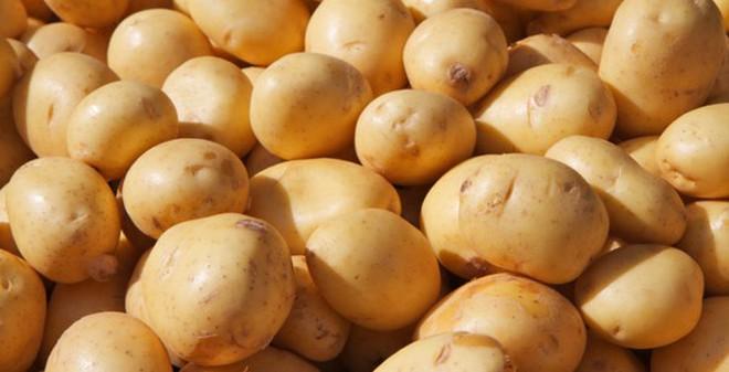 Cảnh báo: 2 đối tượng tuyệt đối không được ăn khoai tây