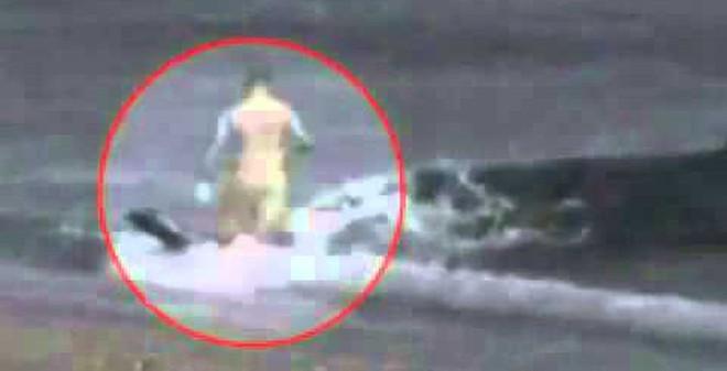 Kinh hoàng cảnh cá voi sát thủ vào tận bờ tấn công con người