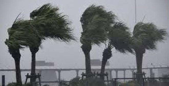 Những trận siêu bão tồi tệ nhất lịch sử thế giới