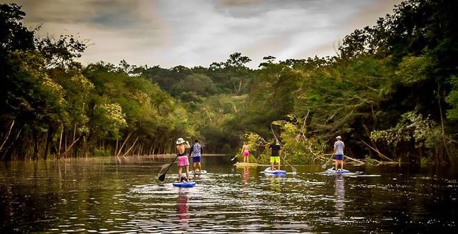 Điều gì khiến rừng Amazon trở nên cực kỳ đáng sợ?