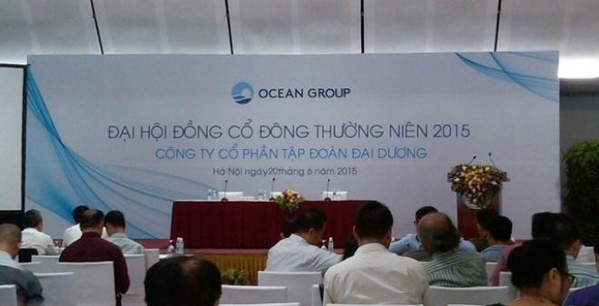 ĐHCĐ Ocean Group (OGC): Năm 2014 lỗ 1.370 tỷ đồng, năm 2015 đặt kế hoạch lãi gần 570 tỷ