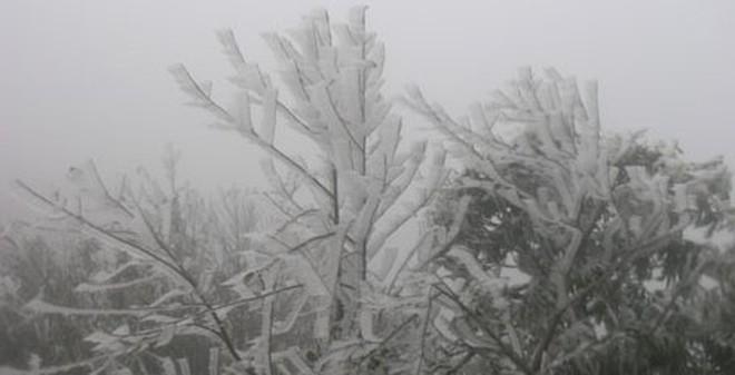 Mưa tuyết có thể sẽ xuất hiện trên dãy Hoàng Liên