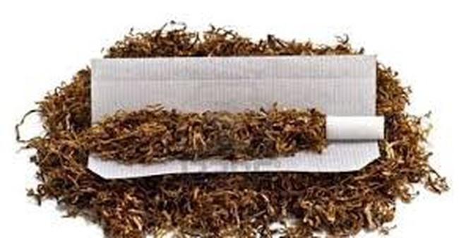 Mẹo diệt ruồi, đuổi gián bắt nhện hiệu quả chỉ trong nháy mắt