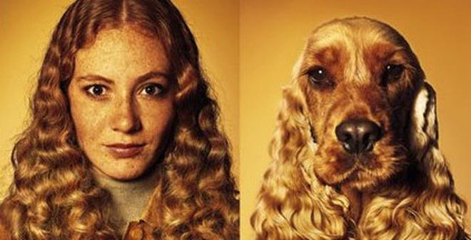 Vì sao lại có những cặp đôi chủ - chó giống nhau như đúc?