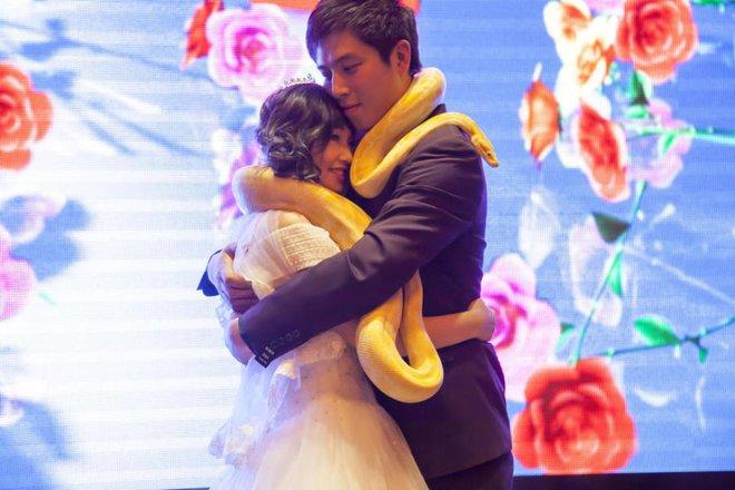 Cặp đôi chơi trội tặng trăn vàng cho nhau trong lễ cưới - Ảnh 2.