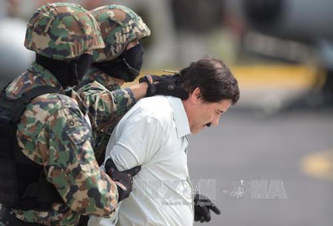 """Trùm ma túy """"El Chapo"""" than khó ở vì… chó sủa dữ"""