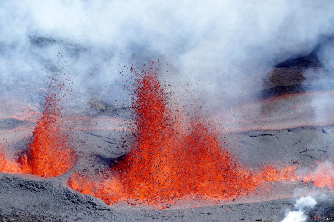 24h qua ảnh: Cuộc chiến tranh mồi đẫm máu của rồng Komodo - Ảnh 10.