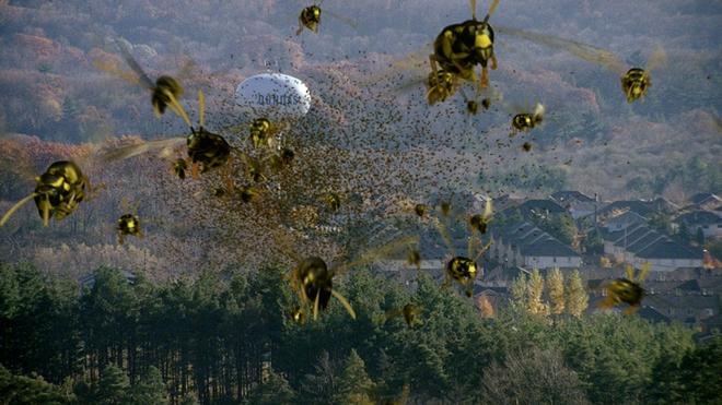 Ong khổng lồ - Con quái vật kinh hoàng khiến cả châu Âu sợ hãi! - Ảnh 6.