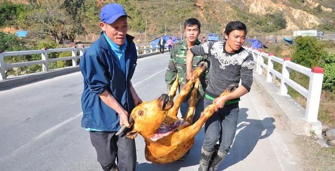 ''Đại lò mổ'' gia súc trên quốc lộ sau trận rét lịch sử