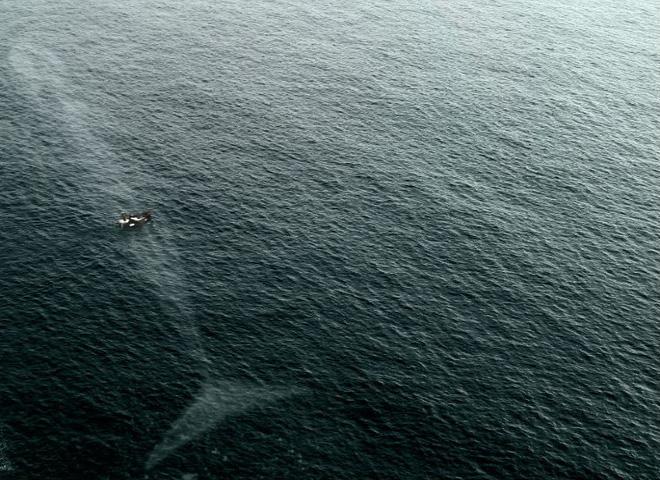 Hội chứng sợ biển: Nỗi ám ảnh kinh hoàng đến từ đại dương! - Ảnh 13.