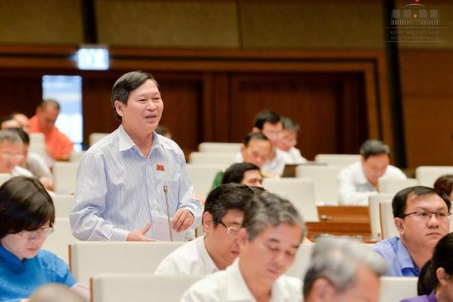 Phó Chủ tịch QH: Phải thông qua Luật Hình sự vào kỳ họp thứ 3 - Ảnh 1.