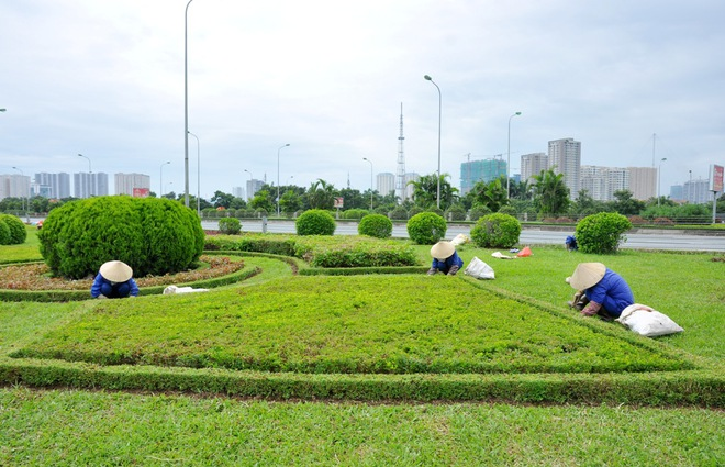 Đã phát hiện đơn vị liên quan đến việc cắt cỏ tốn 53 tỷ đồng/năm - Ảnh 7.