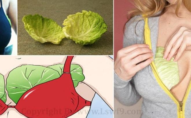 Đặt lá bắp cải vào ngực và chân trước khi đi ngủ - bạn sẽ thấy điều kì diệu xảy ra