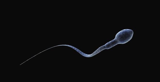 """Tinh trùng """"nhân tạo"""": Đột phá mới chữa vô sinh ở nam giới"""