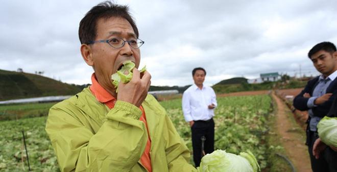 """Kinh doanh nông sản sạch: Nhật bán xà lách 1,2 triệu đồng/kg, còn Việt Nam vẫn đang """"lên vũ trụ bằng dép lốp"""""""