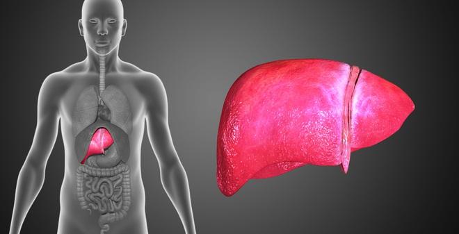 Thức uống rất dễ làm giúp cơ thể thải độc, ngăn ngừa gan nhiễm mỡ