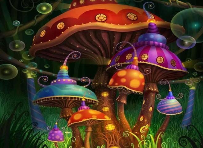 Bí ẩn loài nấm ma thuật  không chỉ gây ảo giác mà còn thay đổi tính cách con người... vĩnh viễn! - Ảnh 4.