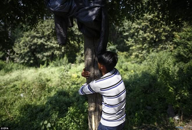 Cuộc sống cùng cực của những đứa trẻ bụi đời hít keo chó thay cơm - Ảnh 8.