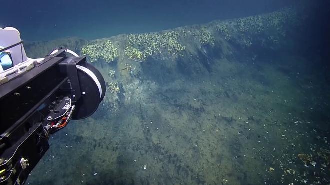 Khám phá ra hồ nước dưới lòng đại dương, sinh vật sống bơi vào vùng nước này hầu hết đều bỏ mạng - Ảnh 1.
