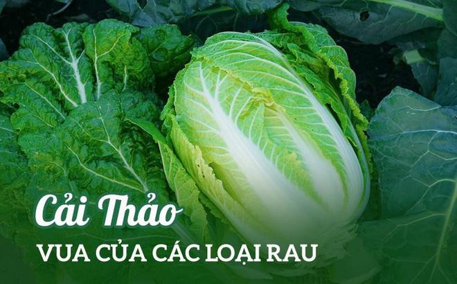 """Loại rau rẻ tiền ở Việt Nam được Trung Quốc, Hàn Quốc tôn vinh là """"vua"""" vì bổ dưỡng"""
