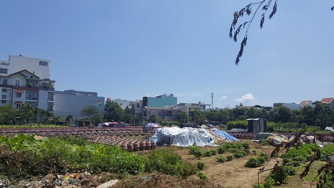 Cận cảnh quỹ đất vàng hàng trăm héc-ta dọc bãi biển Mỹ Khê (Đà Nẵng) của đại gia địa ốc Sài Gòn - Ảnh 3.
