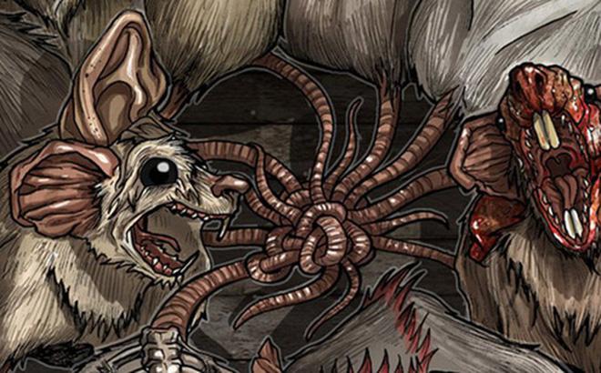 """Vua chuột - hiện tượng... kinh dị hiếm gặp và nguy hiểm của loài động vật """"ai cũng sợ"""""""