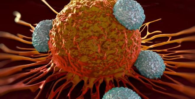 Những hiểu lầm và sự thật về căn bệnh ung thư