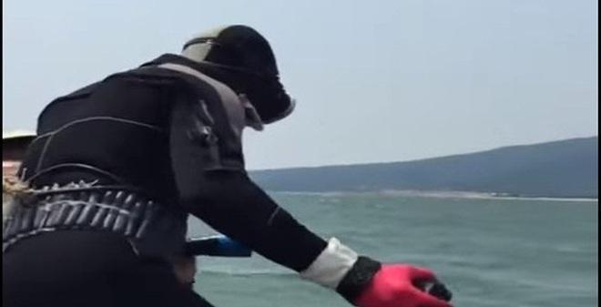 Đã phát hiện ra chất mà thợ lặn ở Formosa nhiễm phải