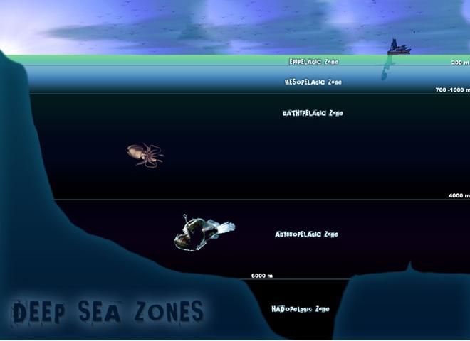 Loạt bí ẩn ma quái trong lòng đại dương đánh đố nhân loại hàng trăm năm - Ảnh 2.