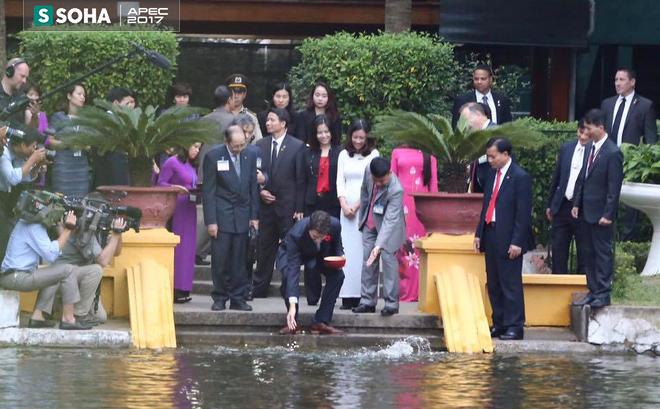 Thủ tướng Canada Justin Trudeau thăm Nhà sàn Bác Hồ và cho cá ăn