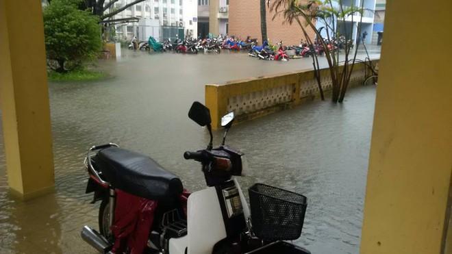 [ẢNH + VIDEO] Sau bão, lũ ngập khắp các tỉnh miền Trung, nhiều khu vực bị chia cắt - Ảnh 9.