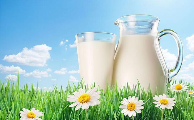 Không chỉ sữa bò, 5 loại sữa sau cũng được người Ấn Độ ưa chuộng vì rất bổ dưỡng