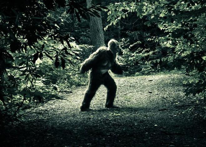 Truy lùng dấu vết 3 quái vật khổng lồ trên Trái Đất: Giới khoa học không thể làm ngơ - Ảnh 2.