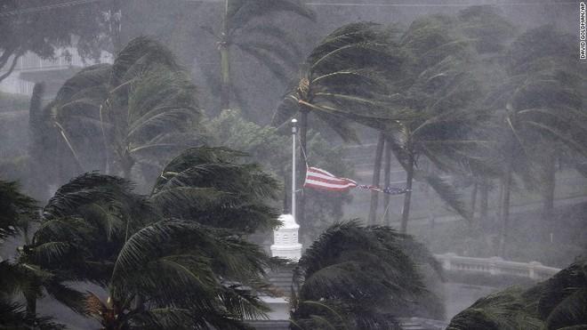 Siêu bão quái vật Irma tấn công dữ dội, Florida chới với trong biển nước - Ảnh 15.