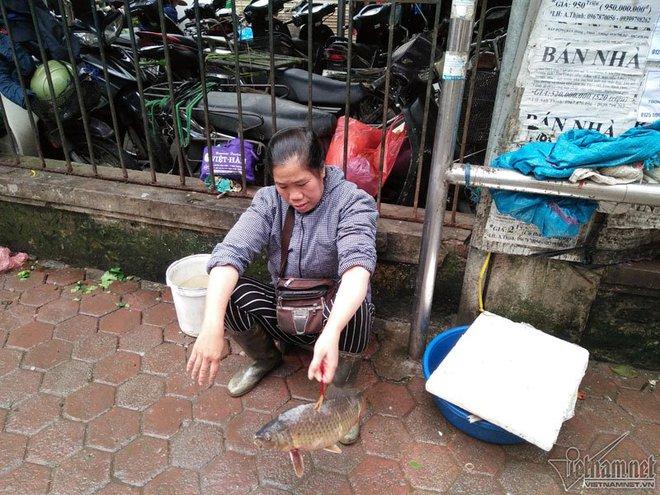 Chị hàng cá chia sẻ về bức ảnh buộc dây vào cá mang bán rong ở vỉa hè Hà Nội - Ảnh 1.