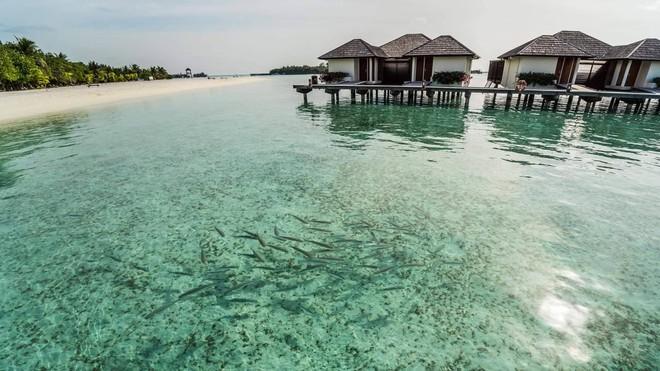 Chia sẻ Maldives không như tưởng tượng của cô gái Việt gây tranh cãi mạnh mẽ - Ảnh 5.