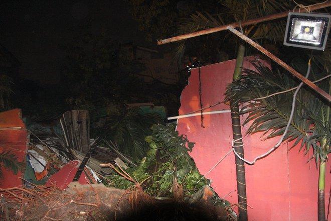 Cây xanh bật gốc đè lên 4 ngôi nhà, 2 mẹ con mắc kẹt cầu cứu - Ảnh 1.