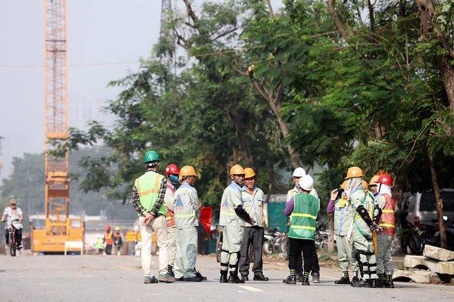 Hà Nội bắt đầu chặt hạ, di dời 130 cây xanh cổ thụ trên đường Kim Mã - Ảnh 3.