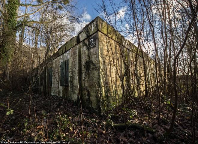 Thâm nhập hầm trú ẩn bí mật của Hitler sâu 30m dưới lòng đất: Đội thám hiểm bị ám ảnh - Ảnh 2.