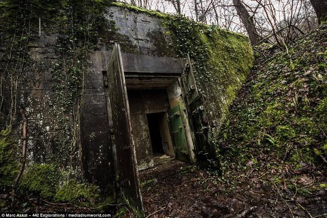 Thâm nhập hầm trú ẩn bí mật của Hitler sâu 30m dưới lòng đất: Đội thám hiểm bị ám ảnh - Ảnh 3.