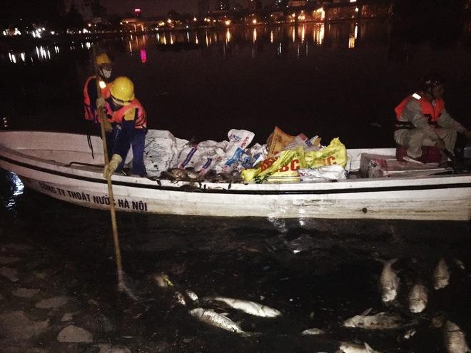 Trắng đêm thu dọn cá chết tại hồ Hoàng Cầu, Hà Nội - Ảnh 5.
