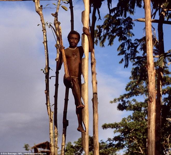Cận cảnh bộ lạc sống trên cây, cao tới 50m và tách biệt với loài người ngay tại Đông Nam Á - Ảnh 4.
