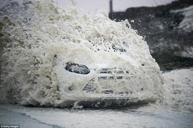 Siêu bão tồi tệ nhất 30 năm ở Anh: Sức gió mạnh khiến chim muông bay tan tác - Ảnh 4.